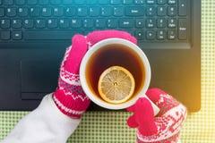 Winterhintergrund - Bild, Laptop, Handschuhe, Strickjacke, heißer Tee Lizenzfreie Stockbilder