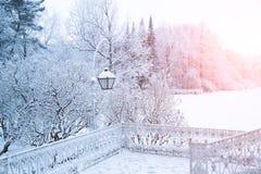 Winterhintergrund, Landschaft Winterbäume im Märchenland Winter Stockfoto
