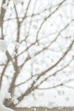 Winterhintergrund mit schneebedeckter Ansicht außerhalb des Fensters Lizenzfreies Stockbild