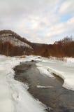 Winterholz landscape-2 Lizenzfreies Stockbild