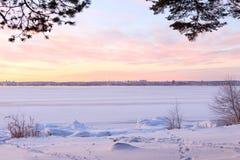Winterholz nähert sich gefrorenem See Stockfotos