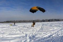 Winterim freien fall springen Ein yellowsuit Skydiver landet auf dem Schnee stockbild
