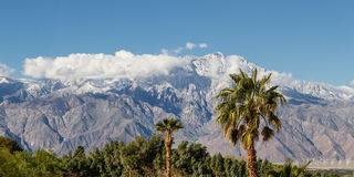 Wintering in California. The contrast of winter in California. warm palm trees in the valley and snow in the high mountains stock photography