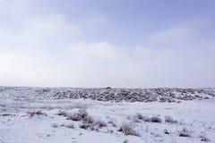 Wintering. Winter view at Balkhash. stock photography