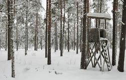 Winterjagd stockfotografie