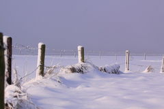 Winterjahreszeit Lizenzfreies Stockbild