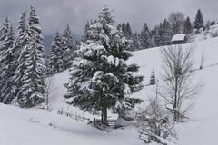 Winterjahreszeit Lizenzfreie Stockfotografie