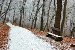 Winterkönigreich Stockfoto
