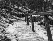 Winterklettern stockfotografie