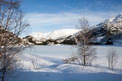Winterland в Норвегии Стоковые Фотографии RF