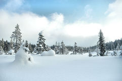 Winterland stockfotos