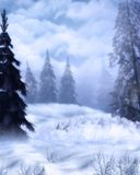 Winterland 图库摄影