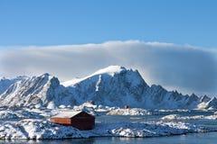 winterland Стоковая Фотография