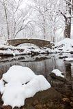 Winterland bro Royaltyfri Bild