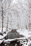 Winterland flod Arkivbilder
