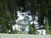 winterland in het hout met rivier stock fotografie