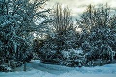 Winterland Island lizenzfreie stockfotografie