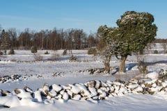 Winterland met sneeuwsteenmuren Royalty-vrije Stock Foto
