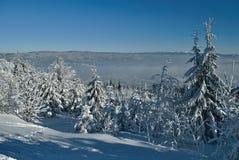 Winterland mit Schnee und blauem Himmel Stockfoto
