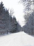 Winterland royaltyfria foton