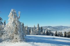 Winterlandscape. Winter in czech republic, mountain stock photos