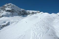 winterlandscape Zdjęcia Stock