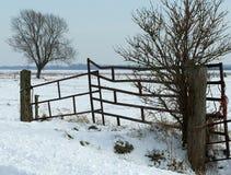 Winterlandscape Stock Afbeeldingen
