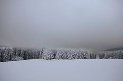 Winterlandscape Foto de Stock Royalty Free