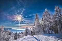 Winterlandscape стоковые изображения rf