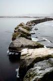 Winterlandscape en el lago Veluwe imagen de archivo