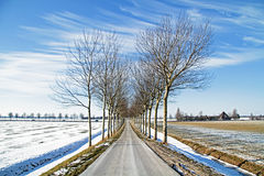 Winterlandscape in the Netherlands Stock Images