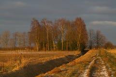 Winterlandscape podczas złotej godzina Obraz Stock