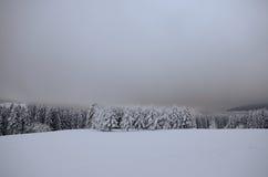 Winterlandscape Royalty Free Stock Photo