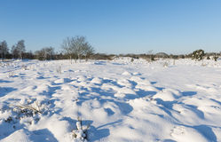 Winterlandscape Royalty Free Stock Images
