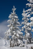 Winterlandschaft Stockfoto
