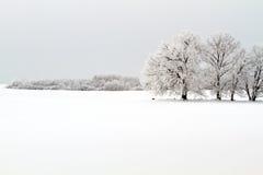 Winterlandschaft Lizenzfreie Stockfotos