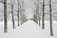 Winterlandschaft. Stockfoto