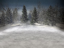 Winterlandschaft. Stockfotos