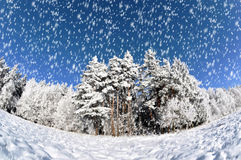 Winterlandschaft Stockfotos