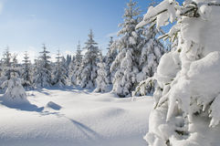 Winterlandschaft Royalty Free Stock Photography