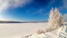 Winterlandschaft auf dem Ufer von einem gefrorenen See mit einem Baum im Frost, Russland, Ural Stockfotografie