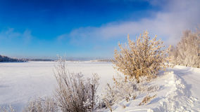 Winterlandschaft auf dem Ufer von einem gefrorenen See mit einem Baum im Frost, Russland, Ural Lizenzfreie Stockfotos