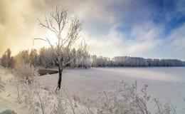 Winterlandschaft auf einem Fluss mit Nebel und Bäumen im Frost von Russland, die Urals Lizenzfreies Stockbild