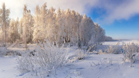 Winterlandschaft auf einem Fluss mit Nebel und Bäumen im Frost von Russland, die Urals Stockfotos