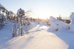 Winterlandschaft auf einem Sonnenuntergang Stockbilder
