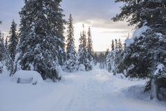 Winterlandschaft auf einem Sonnenuntergang Stockfotos