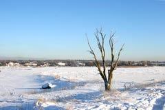 Winterlandschaft auf Ostsee Stockfotos