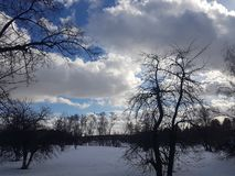 Winterlandschaft, Bäume im Schnee gegen den blauen Himmel in den Wolken lizenzfreie stockfotografie
