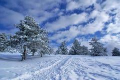 Winterlandschaft D Stockfotos
