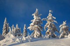 Winterlandschaft in den Bergen Stockfotos